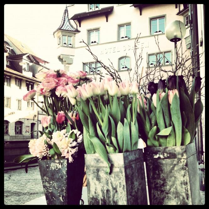 Savvy Sleepers, Dale Janee, fresh flowers from Zug Switzerland