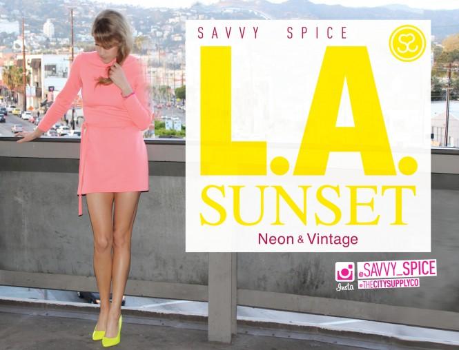 Savvy Spice fashion blog, Dale Janee,