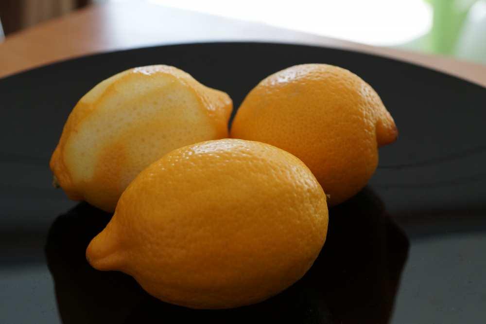 Lemons-Savvy-Spice-fashion-blog-Dale-Janee