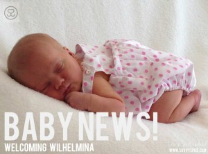 Welcoming Wilhelmina! Our Baby Story